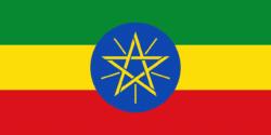 traduccion_amharico