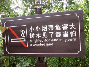 translation mistakes 10