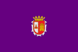 Traductores Burgos
