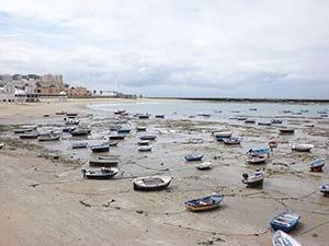 Información sobre traducciones en Cádiz