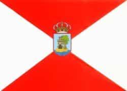 Traducciones Vigo y traductores Vigo