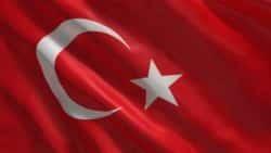 Traductores turco - traducciones turco