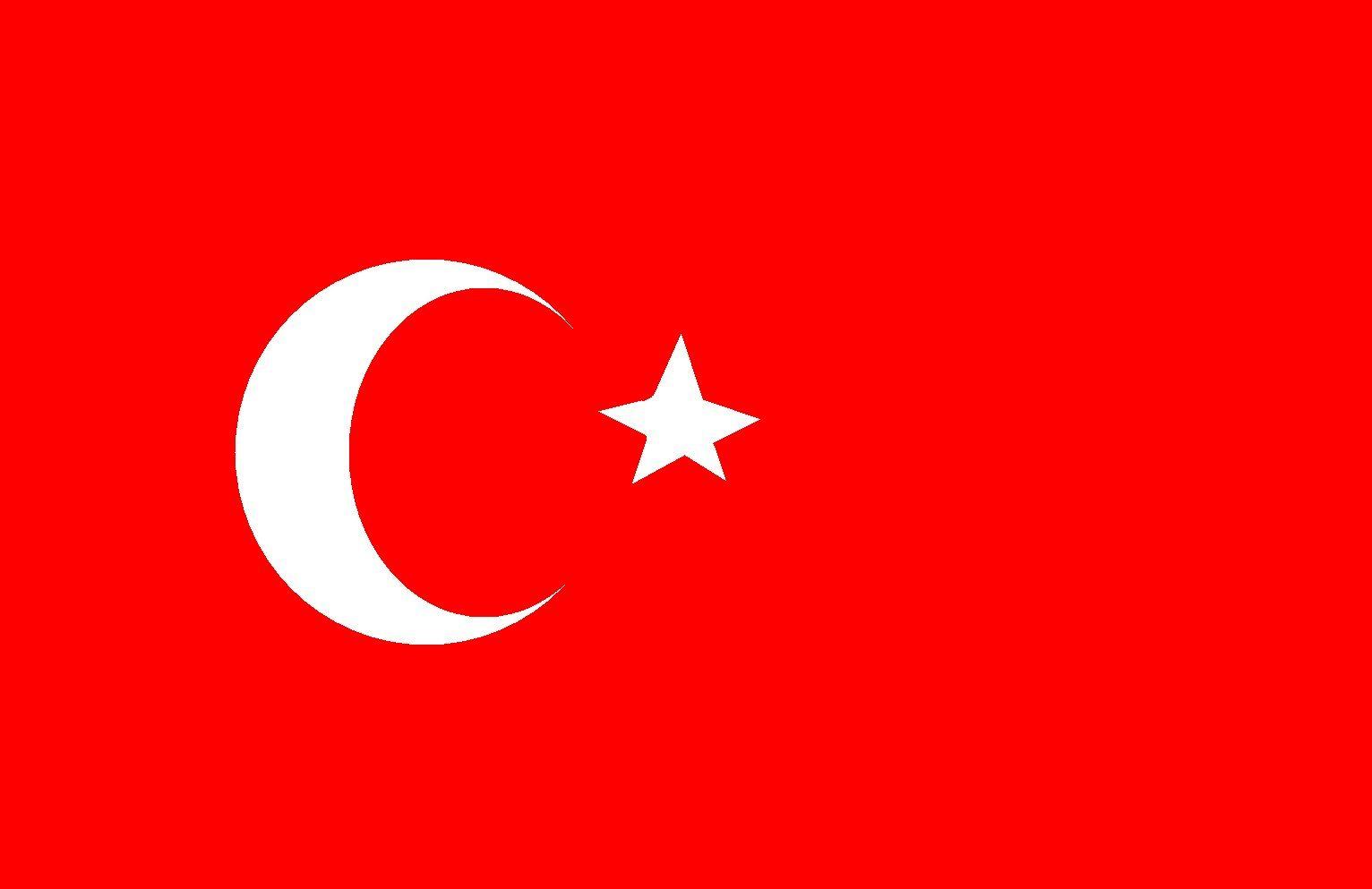 Interpretaciones juradas turco