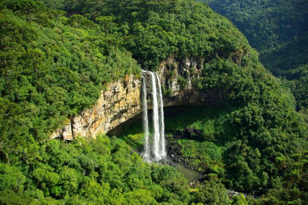 Isla De La Queimada Grande – Brasil