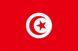 Traducciones español árabe tunecino y traductores árabe tunecino castellano