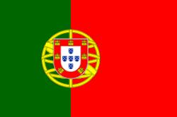 Traducciones español portugués de Portugal y traductores portugués de Portugal castellano