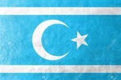 Traducciones español turcomano y traductores turcomano castellano